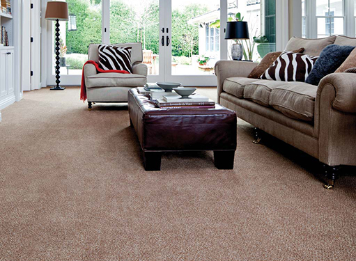 Living room scene with brown carpet